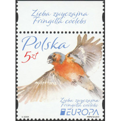 4954 issue name MNH**